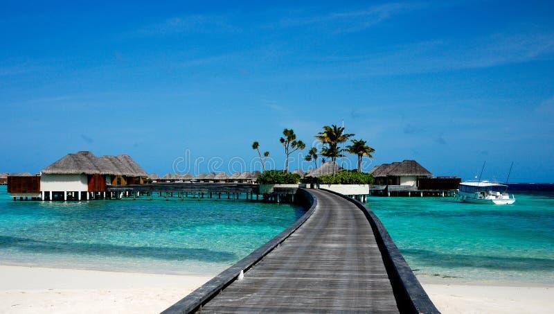 Relaxe em maldives fotografia de stock royalty free