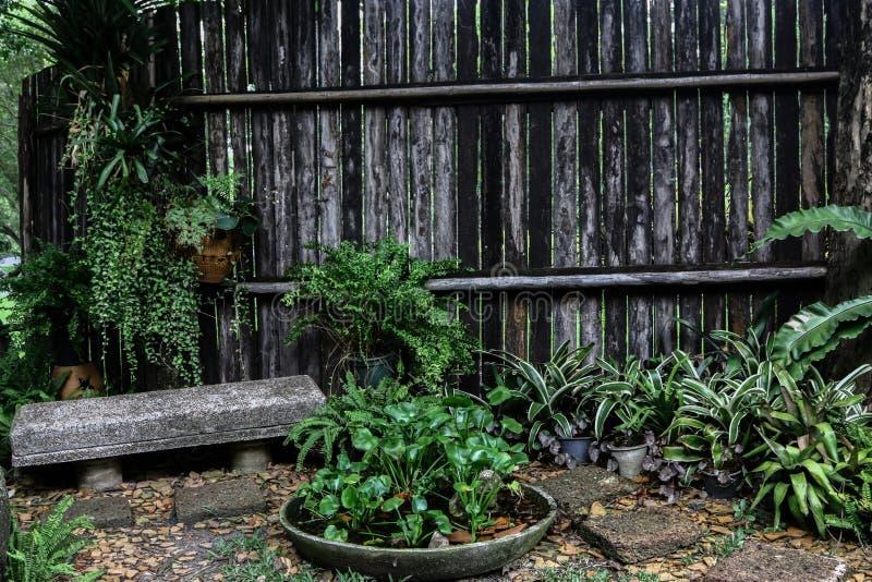Relaxe em seu quintal foto de stock royalty free