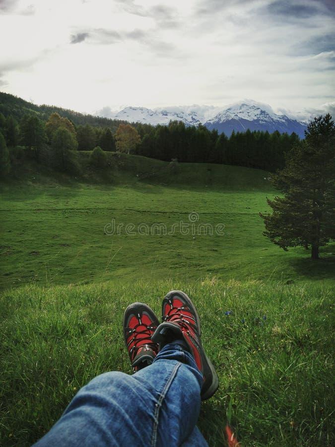 Relaxe em um campo de grama na alta altitude em dolomites fotografia de stock