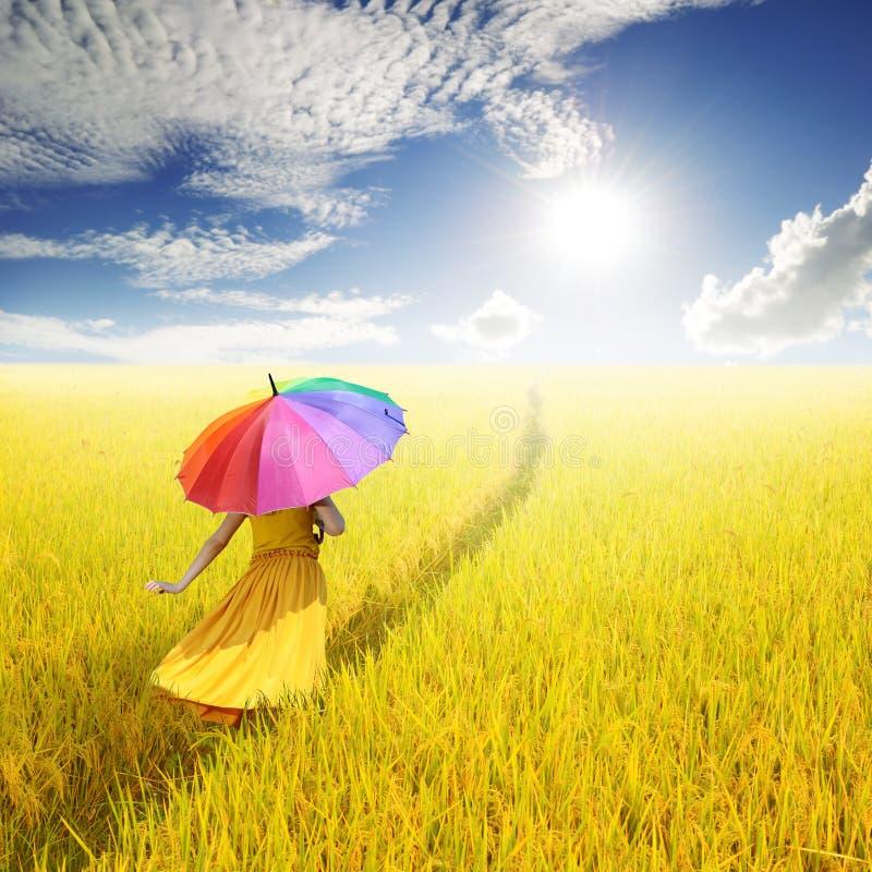 Relaxe a mulher que guarda o guarda-chuva colorido no campo do arroz e no céu amarelos da nuvem foto de stock