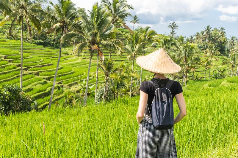 Relaxed fashionable caucasian female tourist wearing small backpack and traditional asian paddy hat looking at beautiful stock photography