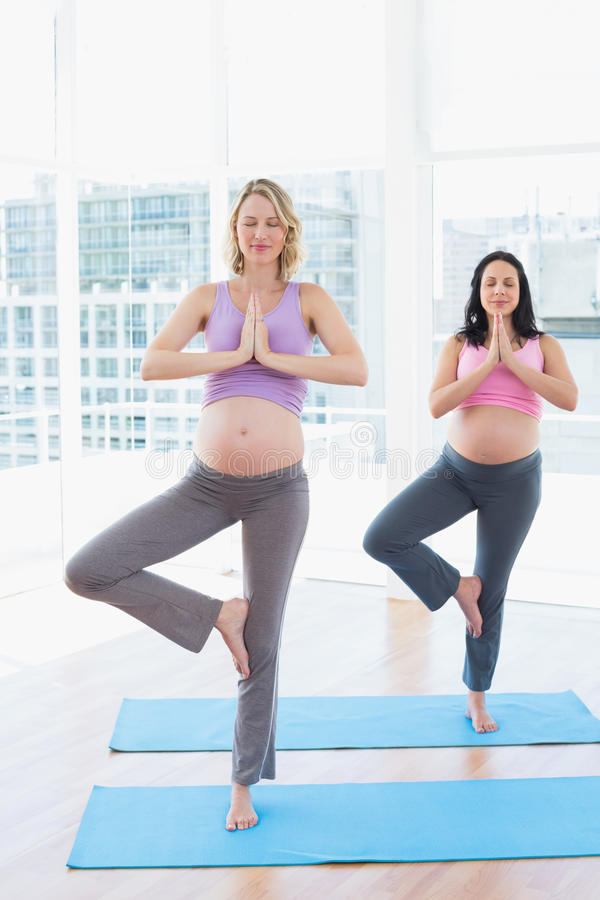 Relaxed pregnant women in yoga class in tree pose stock image