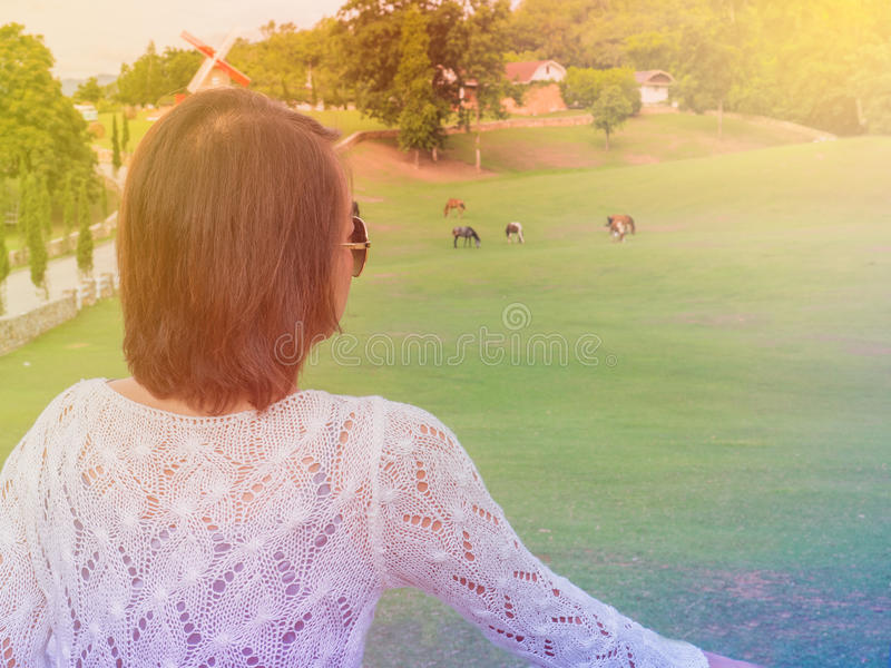 Relaxed tourist on rocks and looking at the horse in the garden, best travel destination in thailand. stock image