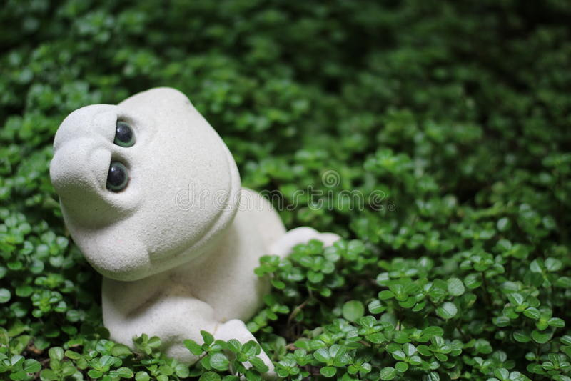 RELAXING FROG royalty free stock photo