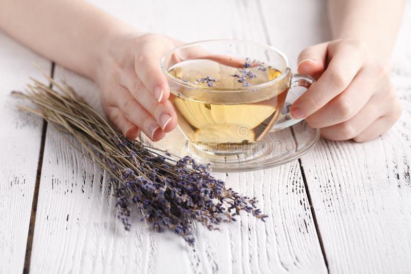Relaxing herbal tea with lavender in hands stock photo