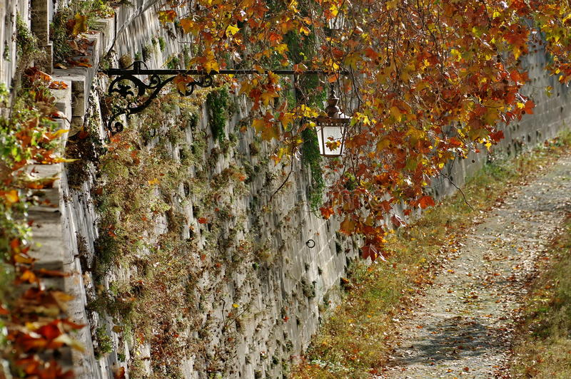 Autumn landscape. Relaxing place for promenade on the shores of the Tiber in Rome, landmark attraction in Italy. Autumn background. Autumn landscape. Relaxing royalty free stock photo