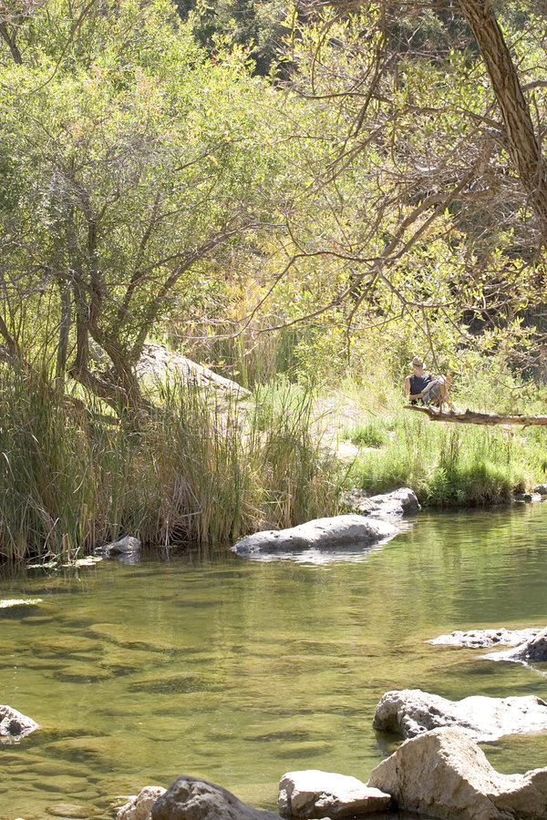 Relaxing, pond, nature royalty free stock image