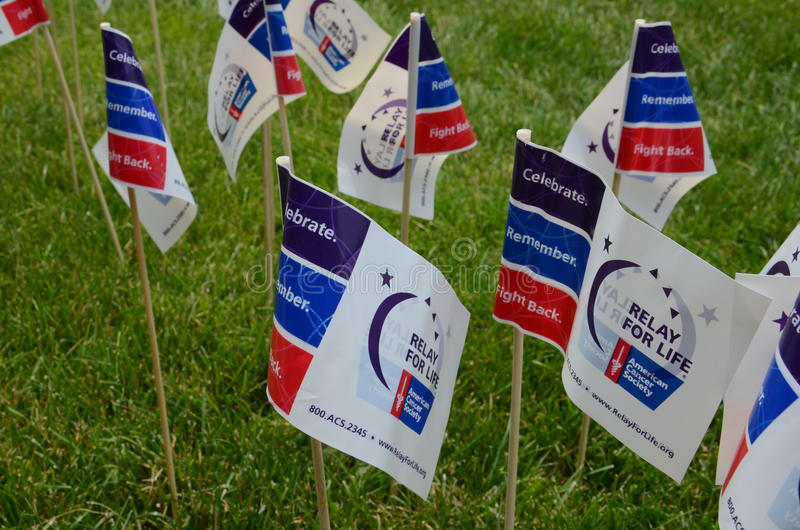 Download Relay for Life flags editorial stock photo. Image of walk - 31885528