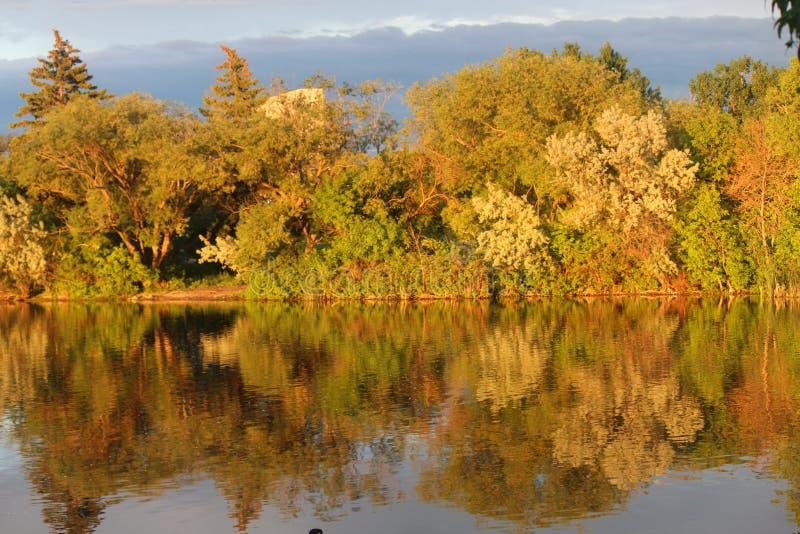 Relection von Autumn Leaves lizenzfreie stockfotografie