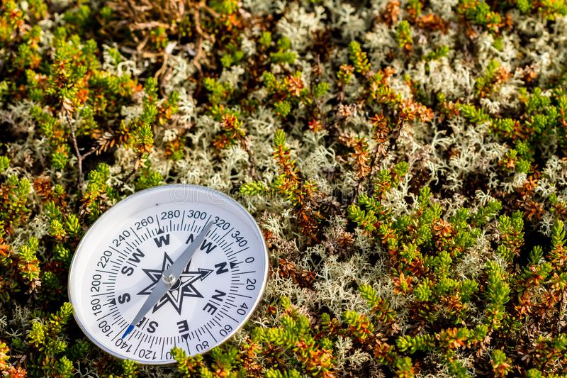 Reliable compass on moss in tundra. Concept for travelling and active lifestyle stock images
