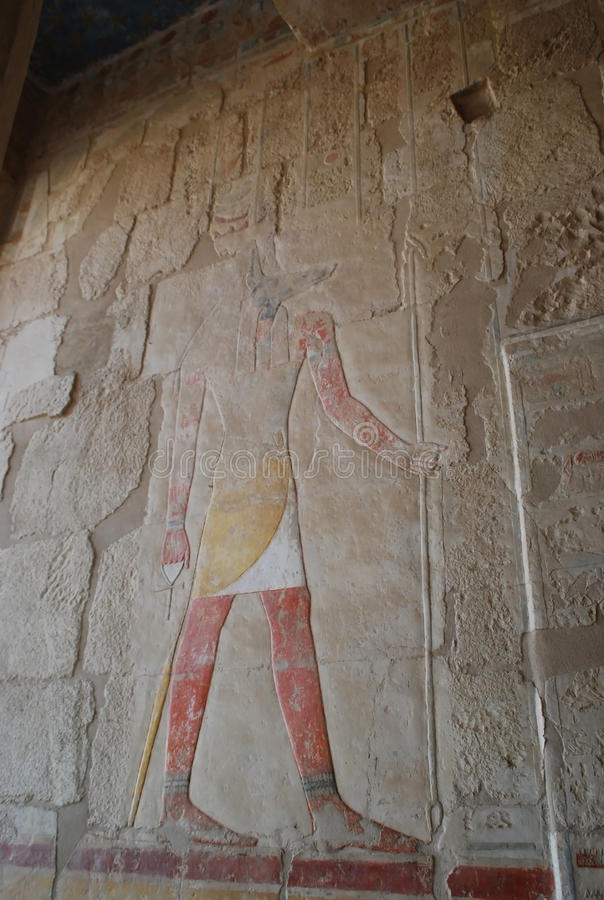 Relief depicting the God Anubis, the god of death and the afterlife. Hatshepsut Temple of Hatshepsut at Theban necropolis, Luxor. Neighborhood, Egypt. The royalty free stock photo