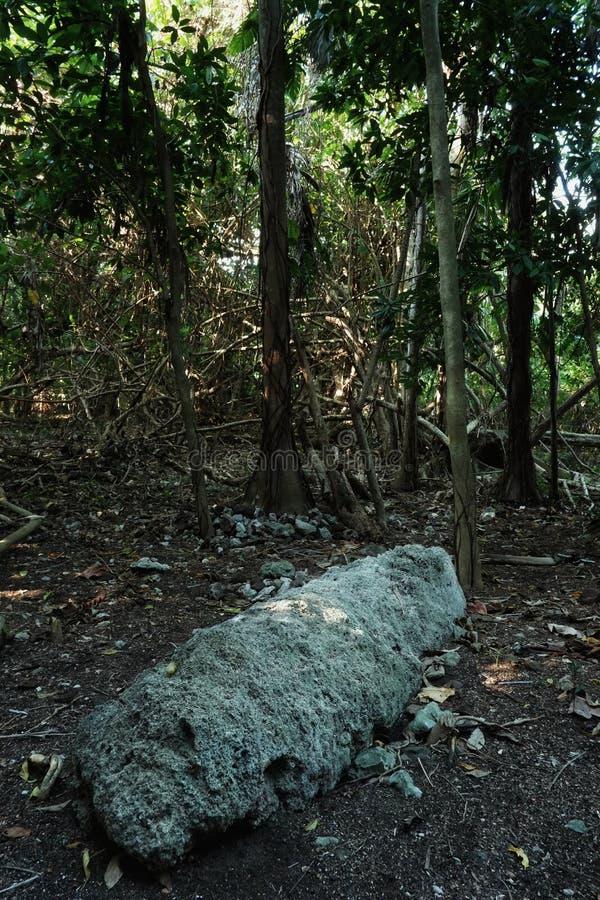 religiöses heiliges Steinartefakt mitten in dem tropischen Regenwalddschungel mit historischer Bedeutung lizenzfreies stockfoto