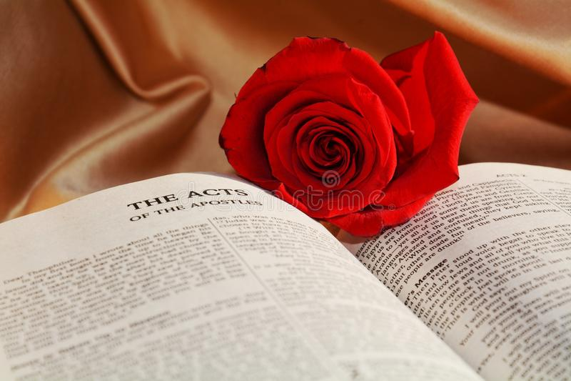 Religion and rose, symbols stock photography