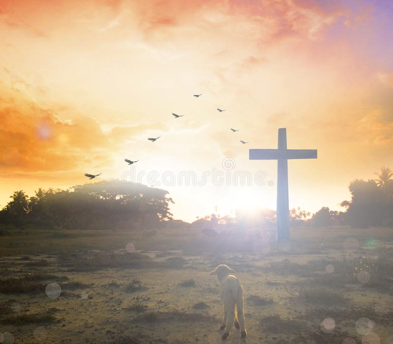Easter concept:Silhouette cross on Calvary mountain sunset background. Religious cross against the background of the rays of the setting sun, symbolizing `faith stock images