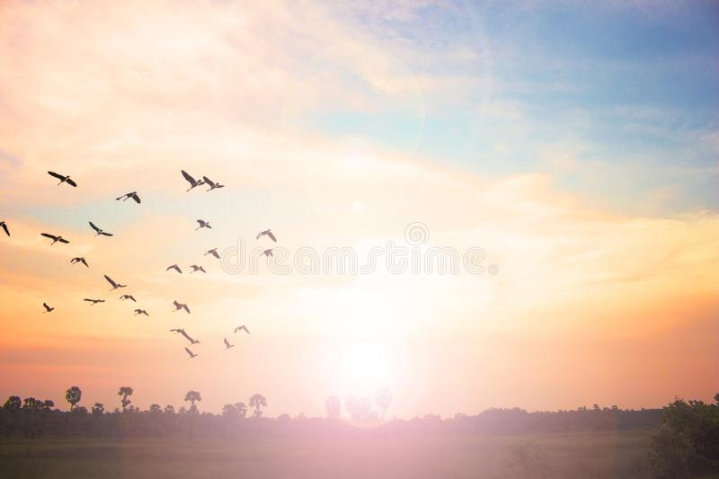 Easter concept:Silhouette cross on Calvary mountain sunset background. Religious cross against the background of the rays of the setting sun, symbolizing `faith royalty free stock image