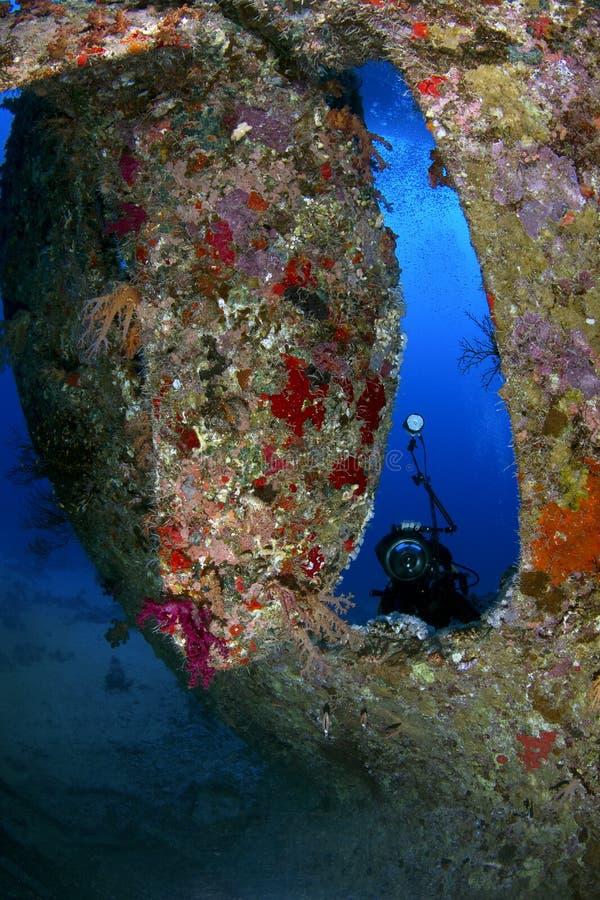 Relitto che si tuffa il Mar Rosso fotografie stock