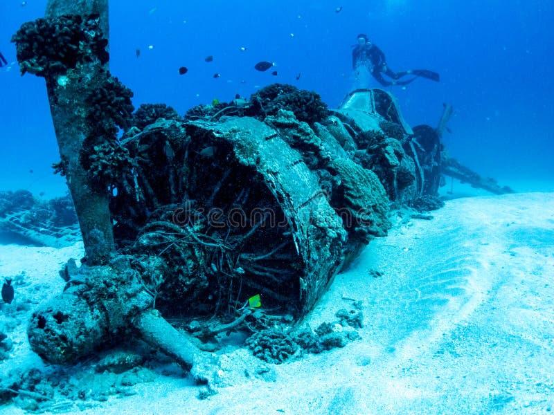 Relitto piano del corsaro dalla guerra mondiale 2 - immersione con bombole in Oahu, Hawai immagine stock