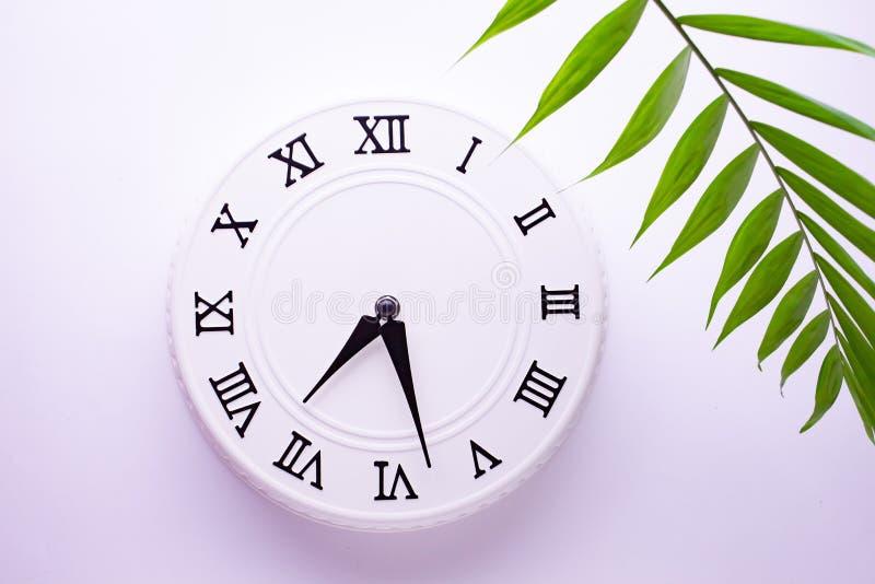 Reloj blanco hermoso con las hojas de la palma tropical El concepto de tiempo im?genes de la decoraci?n del d?a de fiesta fotografía de archivo