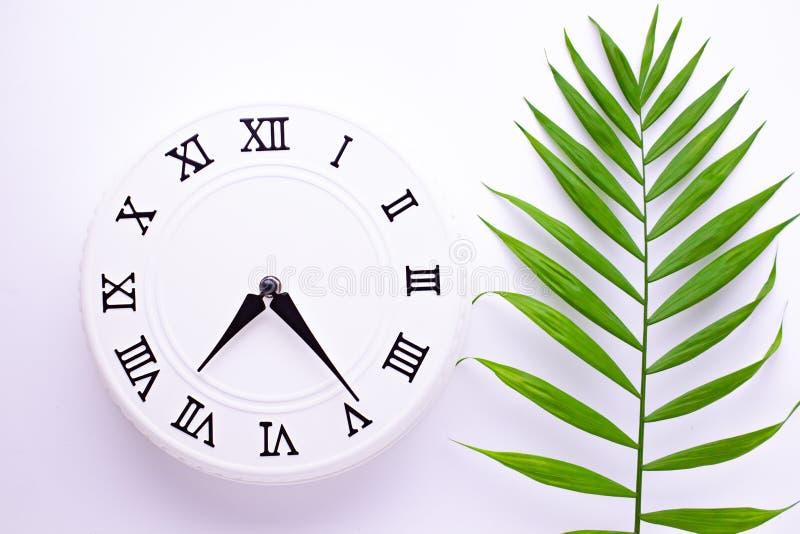 Reloj blanco hermoso con las hojas de la palma tropical El concepto de tiempo im?genes de la decoraci?n del d?a de fiesta foto de archivo libre de regalías