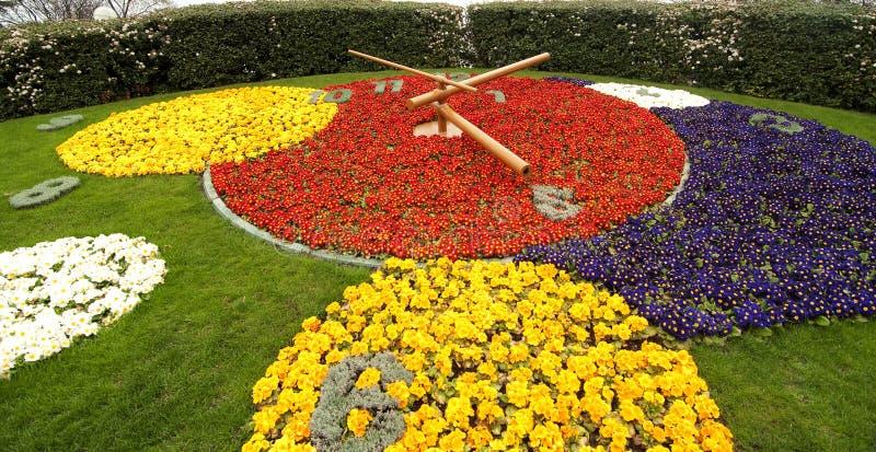 Reloj de la flor fotos de archivo