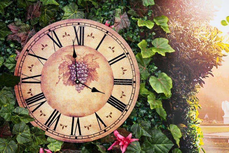 Reloj de pared antiguo viejo con la imagen de la uva en ellos fotografía de archivo libre de regalías
