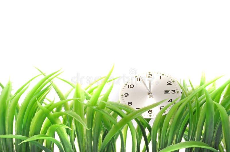 Reloj e hierba alta foto de archivo libre de regalías