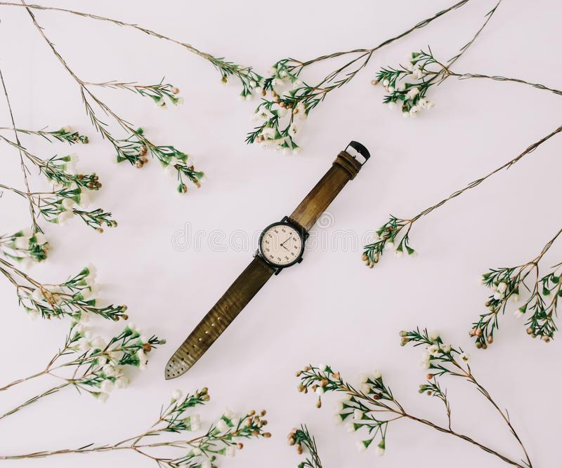 Reloj elegante de las mujeres enmarcado por las ramas y las hojas en el fondo blanco complementos femeninos Endecha plana, visi?n imágenes de archivo libres de regalías