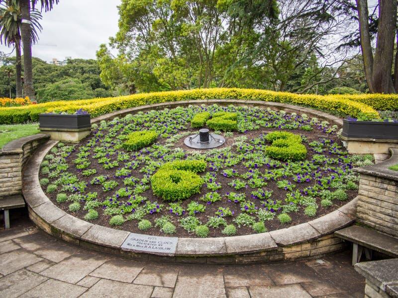 Reloj floral en Albert Park, Auckland, Nueva Zelanda fotografía de archivo libre de regalías