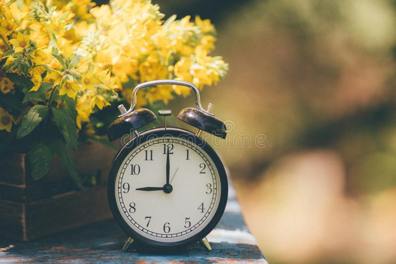 Reloj retro del ` de 9 o Flores en caja de madera vieja Fondo ligero del jardín del día con el espacio para el texto imagen de archivo libre de regalías