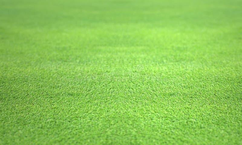 relvado perfeito do gramado do verde do golfe fotografia de stock