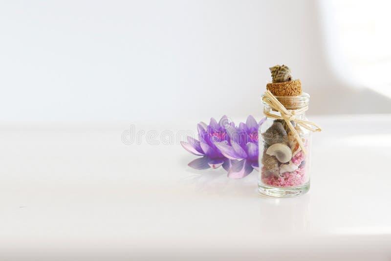 Remède et aromatherapy de fines herbes utilisant les huiles essentielles et les usines naturelles photo libre de droits