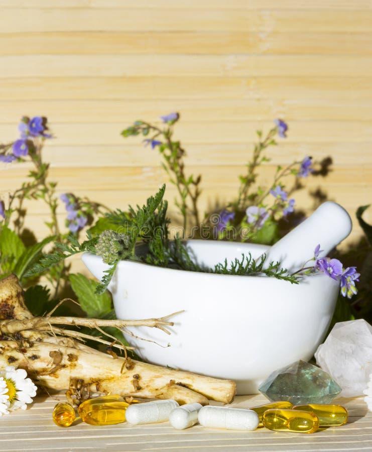 Remèdes et suppléments de fines herbes naturels images libres de droits