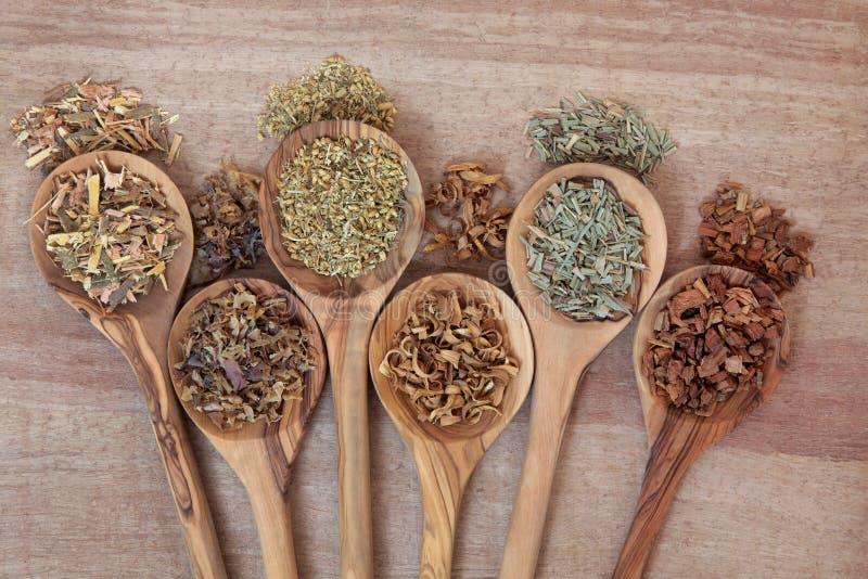 Remèdes naturels de santé photo stock