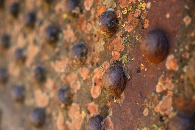 Remaches oxidados imagen de archivo