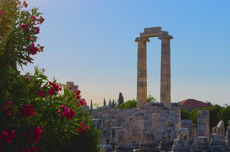 Ruins of the temple of Apollo in Didim, Turkey stock images