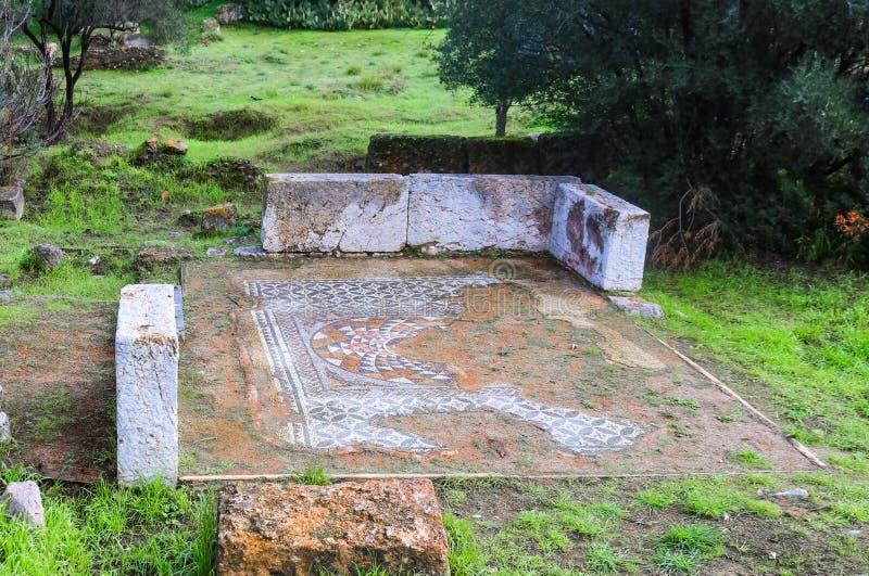 Remants старого пола мозаики около Афин Греции окруженной деревьями и травой стоковая фотография rf