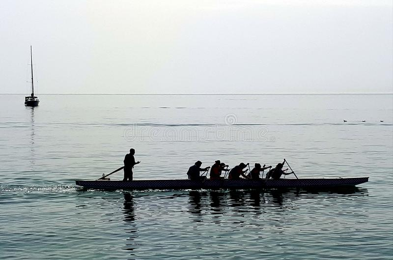 Rematori sul mare calmo fotografia stock libera da diritti