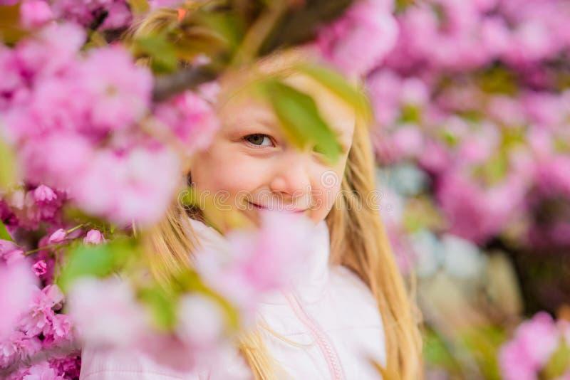 Remedio de la alergia Concepto de la alergia del polen Líbrese de la alergia estacional Muchacha que disfruta del aroma floral Ni fotografía de archivo libre de regalías