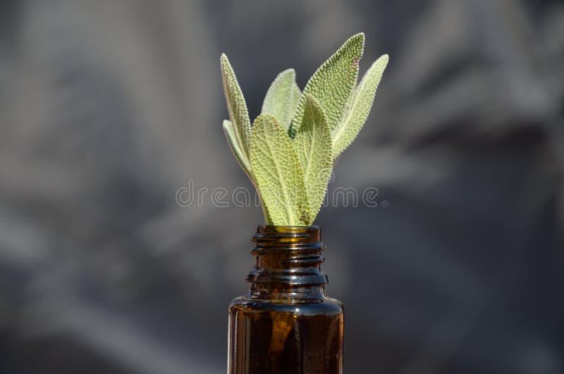 Remedio homeopático fotos de archivo
