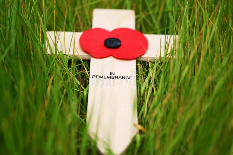 Download Remembrance cross stock photo. Image of death, armistice - 3006208