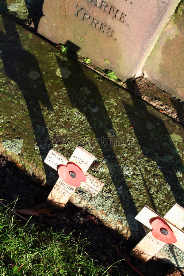 Download Remembrance day stock image. Image of beautiful, died - 1654723