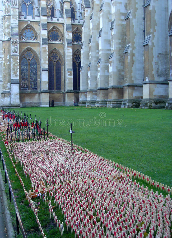 Remembrance Day 3 stock photo