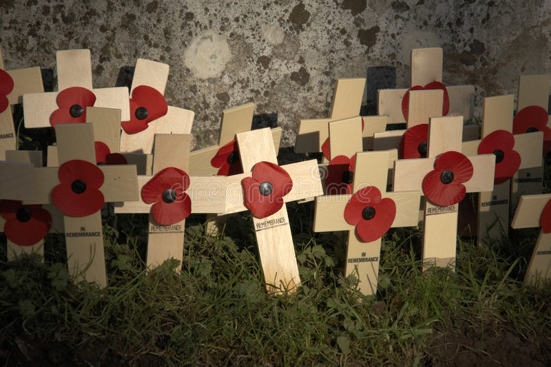Remembrance day stock image