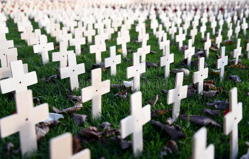Remembrance Day Garden Crosses Close-up royalty free stock photography