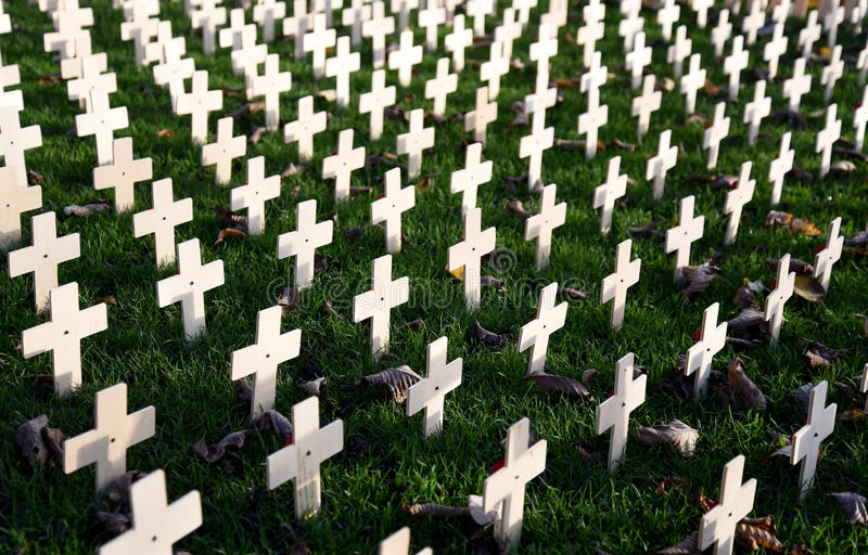 Remembrance Day Garden Crosses stock images