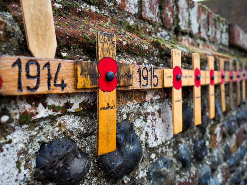Download Remembrance Day Poppy stock image. Image of poppy, life - 83715215