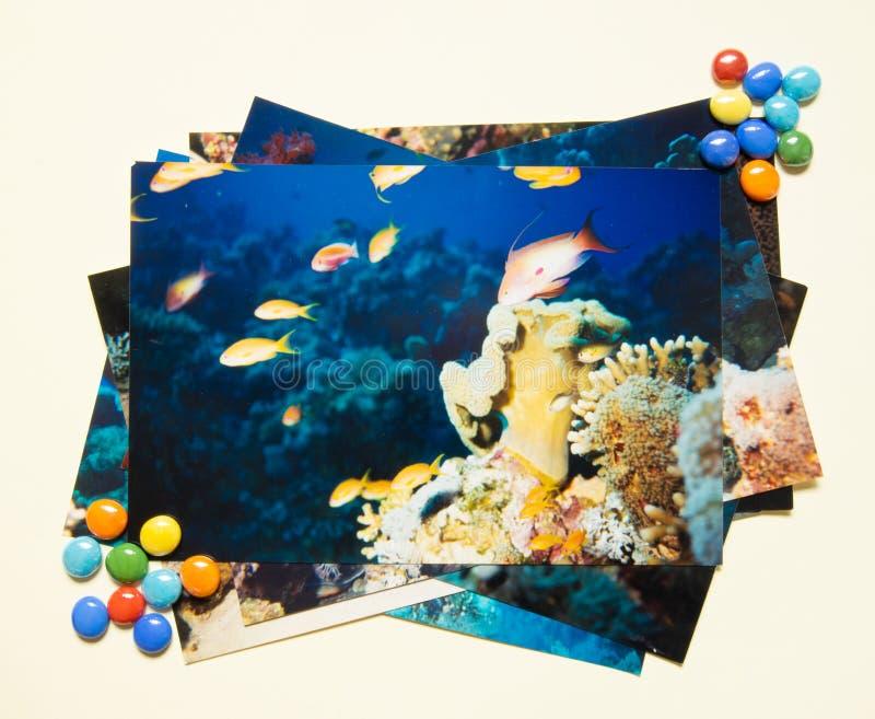 Remembtance do álbum de fotografias e viagem da nostalgia no mergulho do verão Tiro por mim mesmo imagem de stock