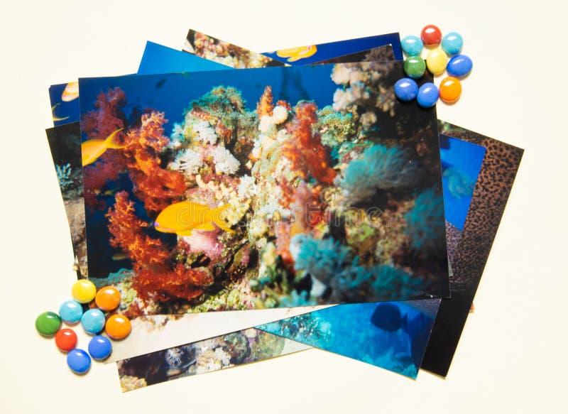 Remembtance do ?lbum de fotografias e viagem da nostalgia no mergulho do ver?o Tiro por mim mesmo fotos de stock