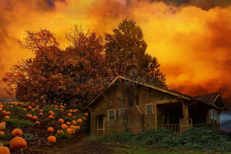 Remendo velho da abóbora da casa no outono EUA de Oregon imagens de stock