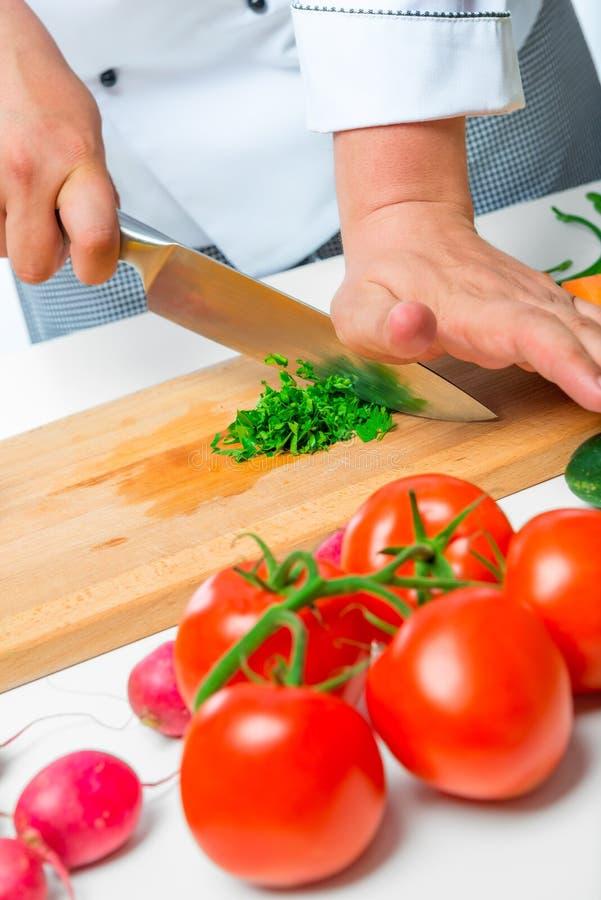Remet le chef a préparé une salade étonnante photographie stock libre de droits